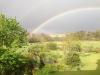Lilys Rainbow