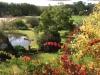 SBGH autumn back garden